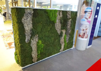VPRO Greenwall bolmos, rendiergras