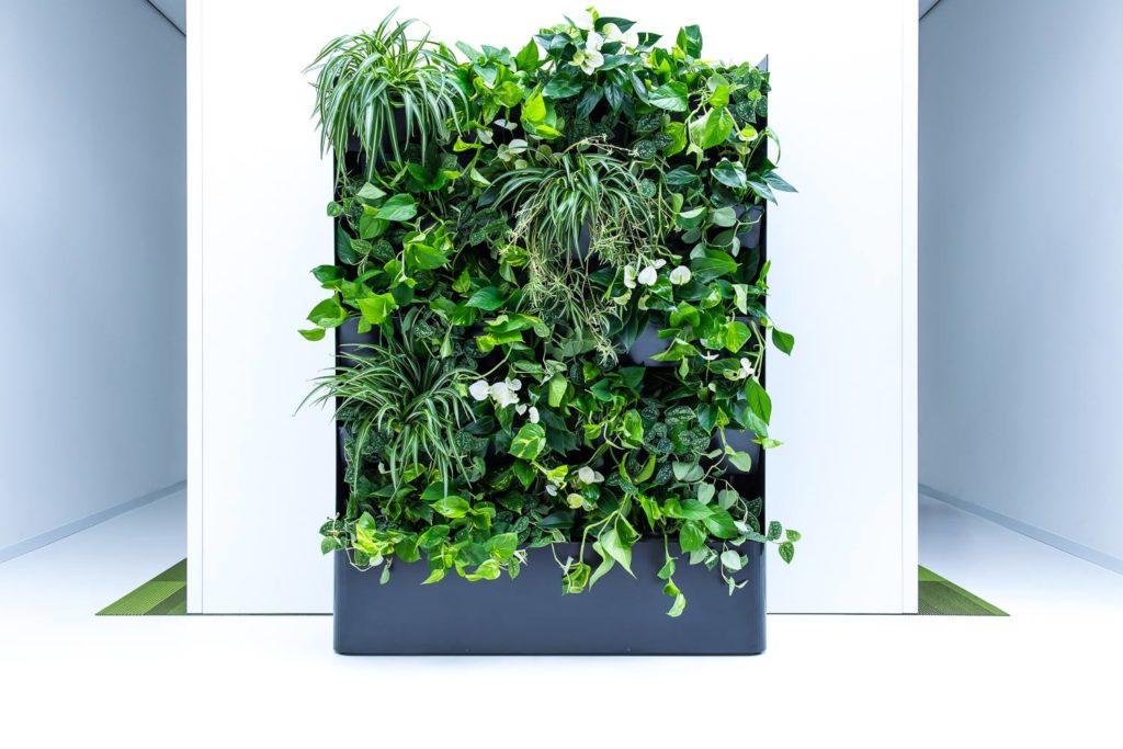 Groene roomdivider